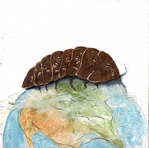 "Isopods—Carbon Allies, 6""x6"" painting for my series ""50 Ways to Tame Our Wicked Climate Crisis."""