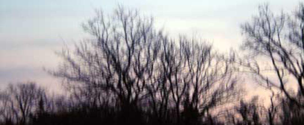 The Fear, Photograph 2011, Belinda Chlouber